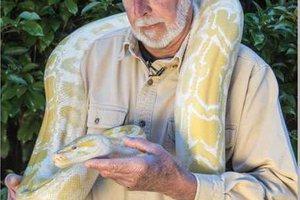 snake WEB